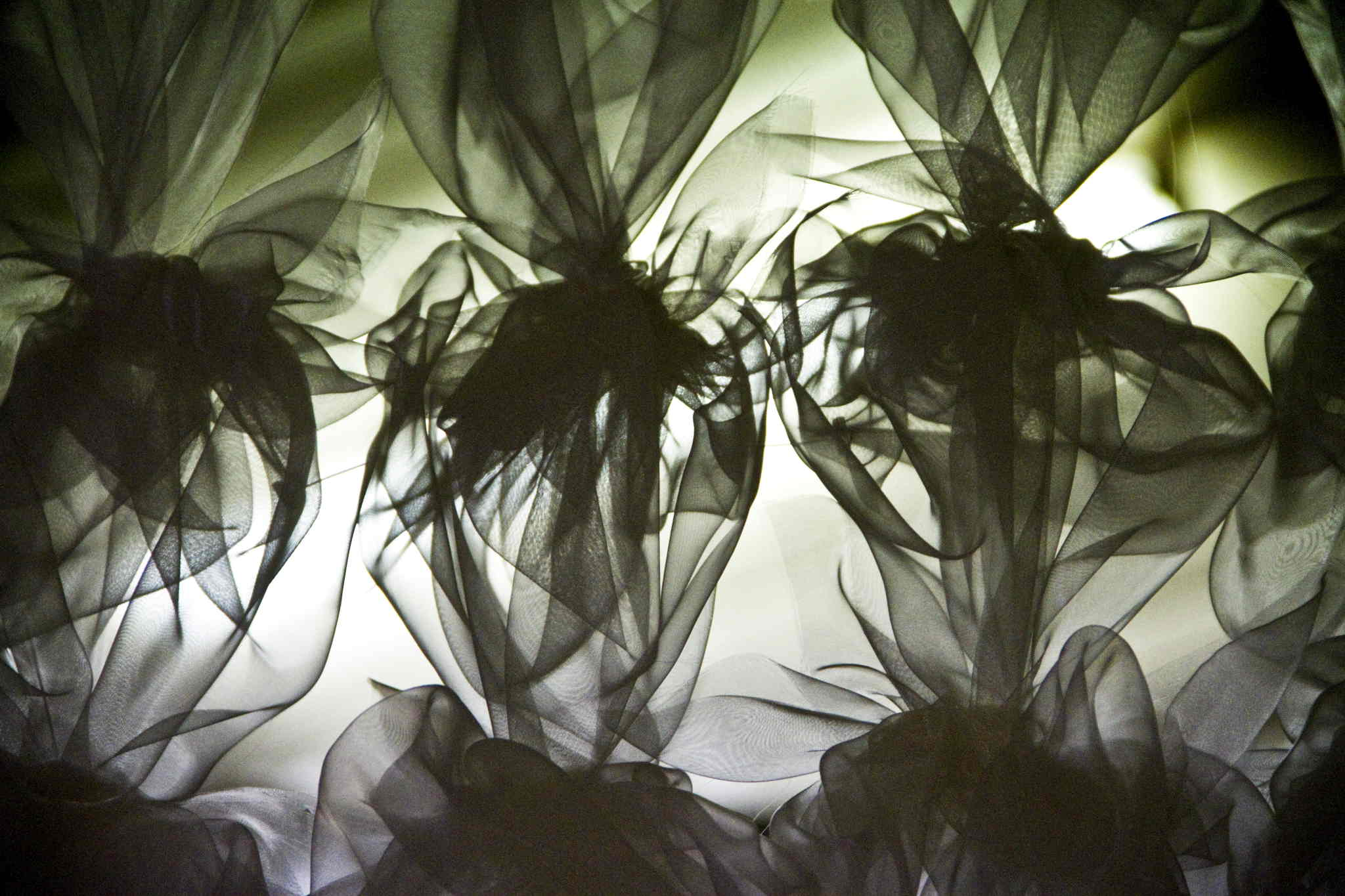 Illuminated By Fire, Briagolong 2010.  Artist: Maxine Salvatore